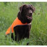 Сигнальная одежда для собак Osso