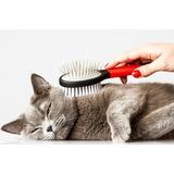 Все для ухода за шерстью и кожей кошек
