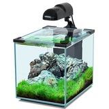 Аквариумы, аквариумные комплексы