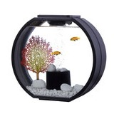 AA-Aquariums