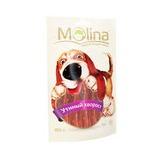 Molina (Таиланд)