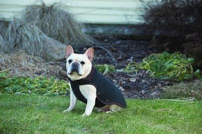 Вязаная нано куртка (свитер) Nano Knit Sweater Dog Gone Smart , цвет серый с коричневым (фото, вид 3)