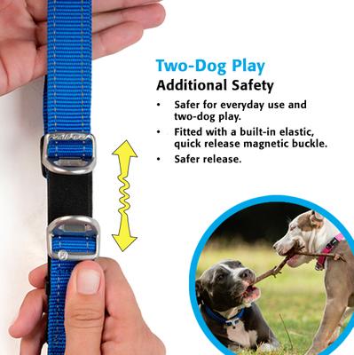Rogz ошейник Utility с системой безопасности Quick Release Magnetic Collar, цвет розовый (фото, вид 3)