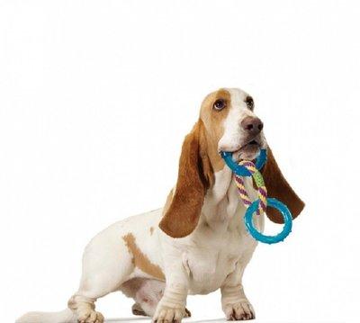 Pet Stages игрушка для собак три кольца, 23 см (фото, вид 2)