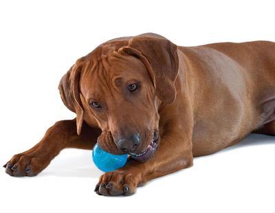 Pet Stages игрушка для собак Орка-тенисный мячик, 6 см (фото, вид 1)