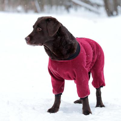 Osso комбинезон для собак из флиса NEW, для сук (цвет красный/бордо), ЗАСТЕЖКА МОЛНИЯ (фото, вид 2)