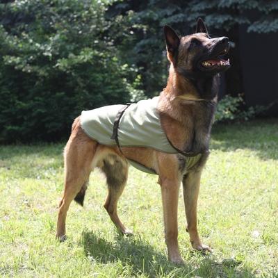 Охлаждающая попона для собак OSSO Fashion (фото, вид 1)