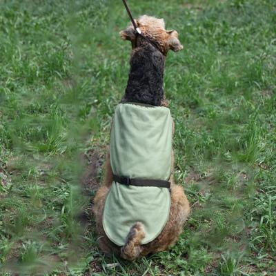 Охлаждающая попона для собак OSSO Fashion (фото, вид 2)
