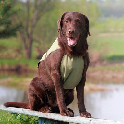 Охлаждающая попона для собак OSSO Fashion (фото, вид 4)