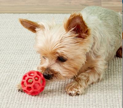 J.W. Hol-ee Roller игрушка для собак Мяч сетчатый, каучук (фото, вид 3)