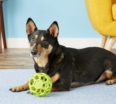 J.W. Hol-ee Roller игрушка для собак Мяч сетчатый, каучук (фото, вид 4)