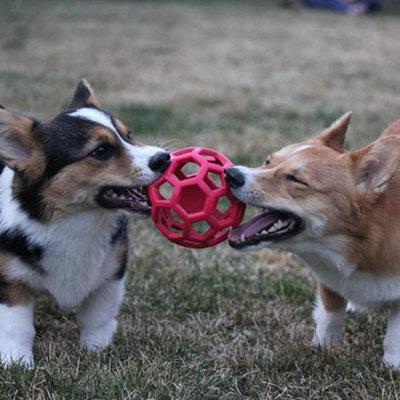 J.W. Hol-ee Roller игрушка для собак Мяч сетчатый, каучук (фото, вид 5)