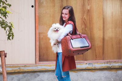 Ibiyaya складная сумка-переноска для кошек и собак до 6 кг Portico Deluxe Leather Pet Transporter, прозрачная с коричневой кожей (фото, вид 1)