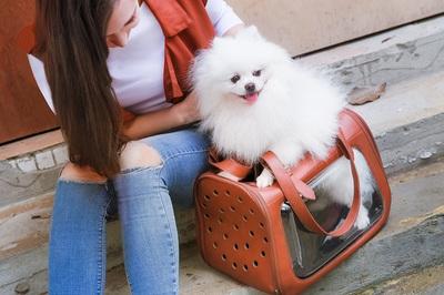 Ibiyaya складная сумка-переноска для кошек и собак до 6 кг Portico Deluxe Leather Pet Transporter, прозрачная с коричневой кожей (фото, вид 2)