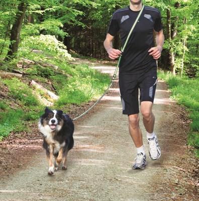 Trixie Поводок для пробежки, с мягким поясом, цвет серый с зеленым (фото, вид 1)