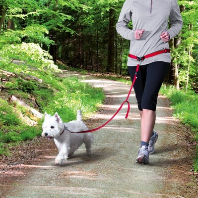 Trixie пояс для бега с собакой с поводком для мелких и средних пород собак, цвет красный (фото, вид 1)