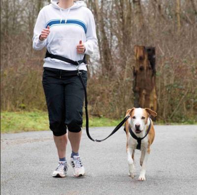 Trixie пояс для бега с собакой с поводком, цвет черный (фото, вид 1)