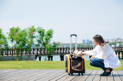 Ibiyaya многофункциональная тележка-трансформер (сумка-тележка-рюкзак) Liso для кошек и собак (Parallel Transport Pet Carrier), коричневая с оранжевым (Ибияйя) (фото, вид 5)