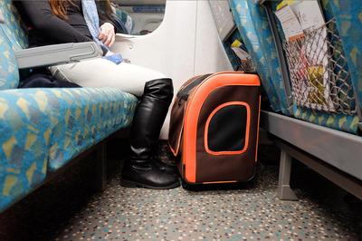 Ibiyaya многофункциональная тележка-трансформер (сумка-тележка-рюкзак) Liso для кошек и собак (Parallel Transport Pet Carrier), коричневая с оранжевым (Ибияйя) (фото, вид 9)
