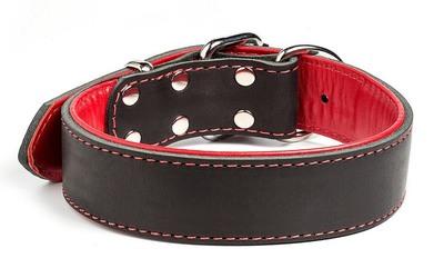 """Gripalle ошейник для собак """"Остин"""", натуральная кожа, 2 слоя, цвет черный (фото, вид 1)"""