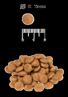 Blitz для взрослых собак мелких и миниатюрных пород (фото, вид 1)