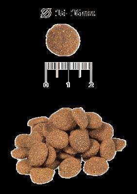 Blitz сухой корм для взрослых собак всех пород с индейкой и ячменем BLitz Sensitive Turkey & Barley Adult Dog All Breeds (фото, вид 1)