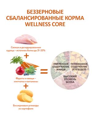 Welness Core сухой корм из ягненка с яблоком для взрослых собак всех пород (фото, вид 9)