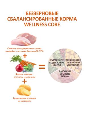 Welness Core сухой корм из ягненка с яблоком для взрослых собак всех пород (фото, вид 11)