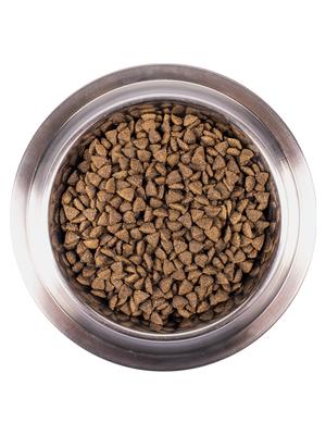 Monge Dog Speciality Mini корм для взрослых собак мелких пород ягненок с рисом и картофелем (фото, вид 4)