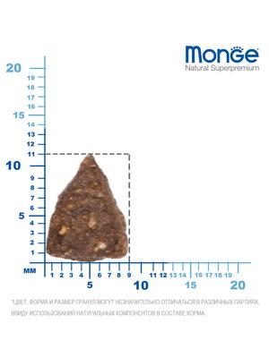 Monge Dog Speciality Mini корм для взрослых собак мелких пород ягненок с рисом и картофелем (фото, вид 5)
