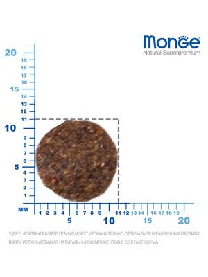 Monge Dog Speciality Mini корм для щенков мелких пород ягненок с рисом и картофелем (фото, вид 5)