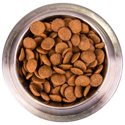 Monge Dog Maxi корм для взрослых собак крупных пород (фото, вид 8)
