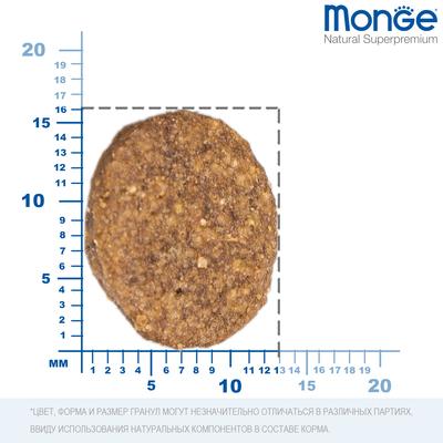 Monge Dog Speciality корм для собак всех пород говядина с рисом Dog All Breeds Beef and Rice (фото, вид 7)