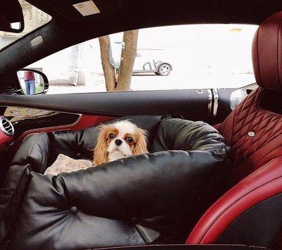 DogsCars Автокресло для перевозки собак в автомобиле, цвет черный, размер 50х50 см (фото, вид 8)