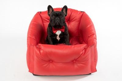 DogsCars Автокресло для перевозки собак в автомобиле, цвет красный (фото, вид 1)