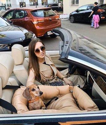 DogsCars Автокресло для перевозки собак в автомобиле, цвет красный (фото, вид 4)