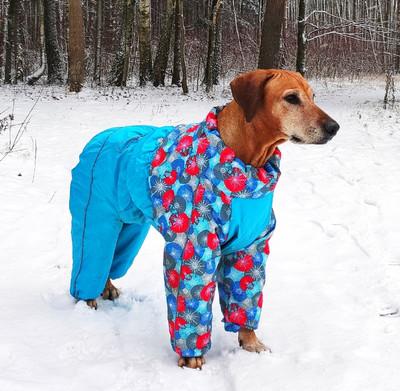 Osso зимний комбинезон для собак на синтепоне, для сук (разные цвета) (фото)
