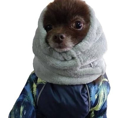 Osso Fashion снуд для собак (фото)