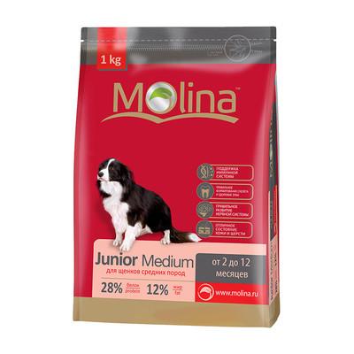 Molina корм для щенков средних пород «Junior Medium»