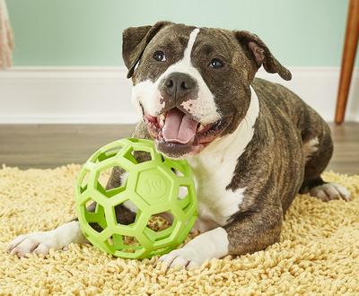 J.W. Hol-ee Roller игрушка для собак Мяч сетчатый, каучук (фото)