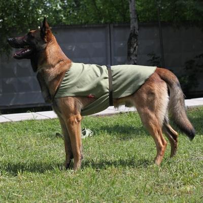 Охлаждающая попона для собак OSSO Fashion (фото)
