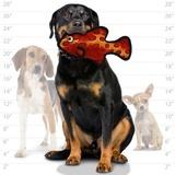 """Tuffy супер прочная игрушка для собак """"Обитатели океана"""" Рыбка, красная, прочность 8/10, Ocean Creature Fish Red"""