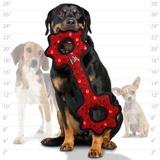 Tuffy супер прочная игрушка для собак Буксир для перетягивания с шестеренками, красный, прочность 9/10, Ultimate Tug-O-Gear Red Paw