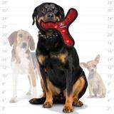 Tuffy супер прочная игрушка для собак Бумеранг, красный, прочность 8/10, Ultimate Bowmerang Red Paw