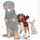 Tuffy супер прочная игрушка для собак Бумеранг малый, красный, прочность 8/10, Jr Bowmerang Red Paw
