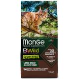 Monge Cat BWild GRAIN FREE беззерновой корм из мяса буйвола для крупных кошек всех возрастов