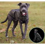 Dog Gone Smart светоотражающий дождевик с флисовой подкладкой Hexagon jacket, цвет оливковый
