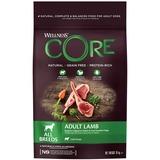 Welness Core сухой корм из ягненка с яблоком для взрослых собак всех пород