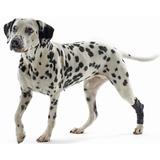 Kruuse Rehab Hock Protection протектор скакательного сустава собаки
