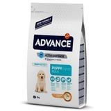 Advance Maxi Junior для щенков крупных пород 12-24 мес, 15кг